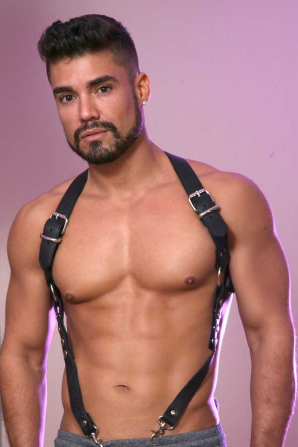 KB Traditional Harness