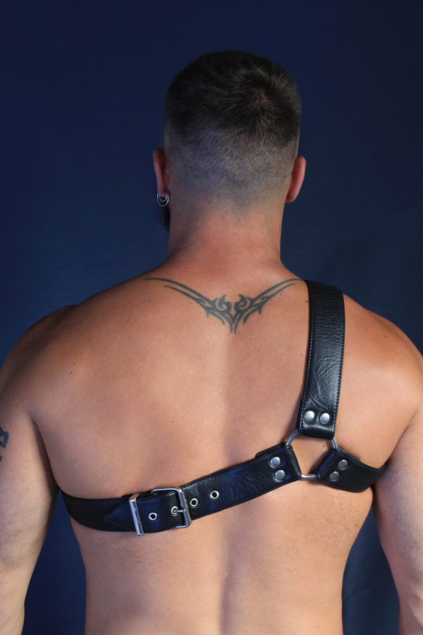 Gay Harness
