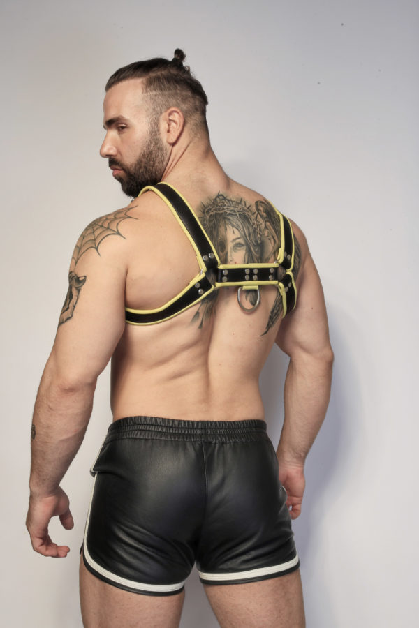 Yellow Leather Harness