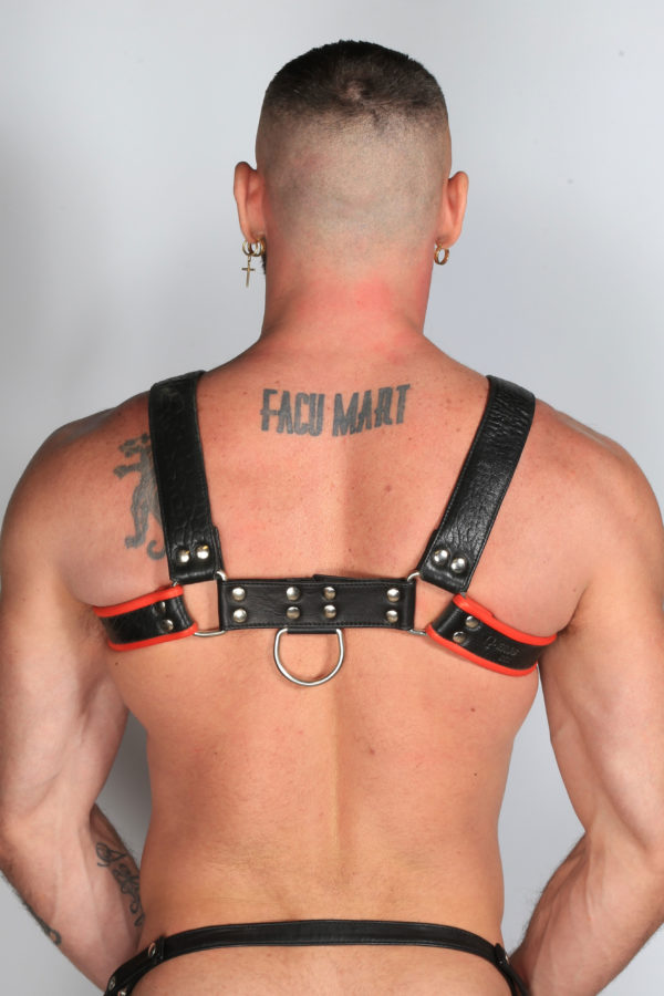 Leather Harness Black/Red