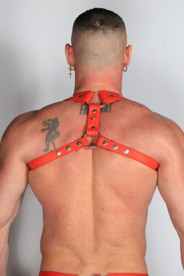 Leather Short Harness Red