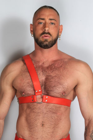 Kristen Bjorn Half Leather Harness
